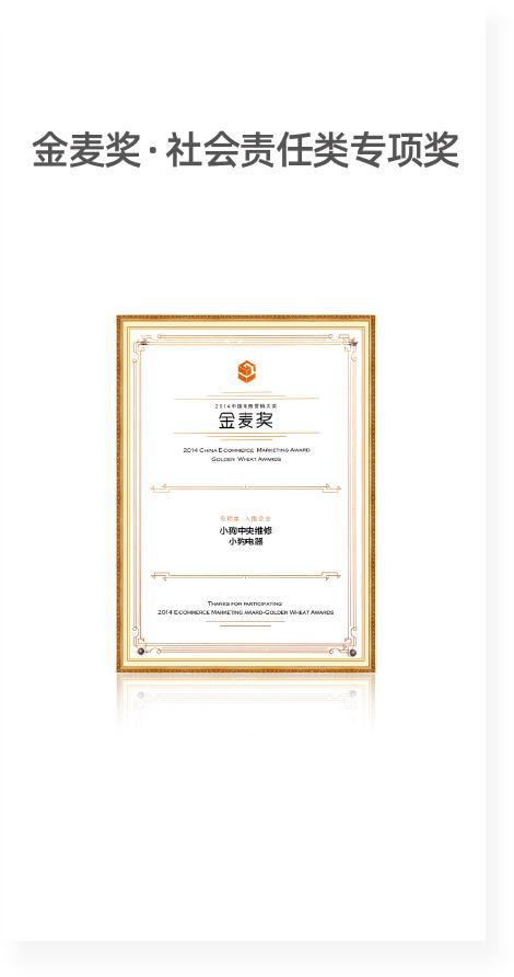 TES年度最佳用户体验奖.png